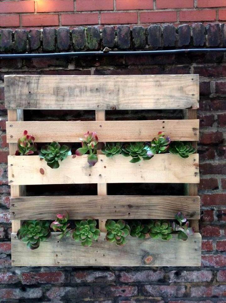 wooden pallet wall hanging planter