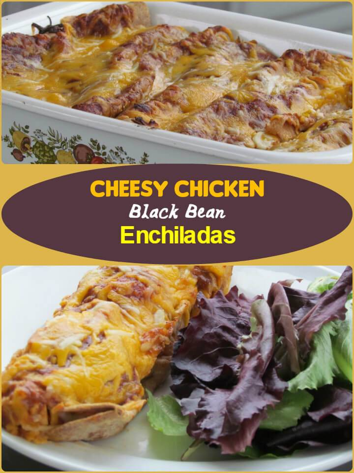 cheesy chicken black bean enchiladas
