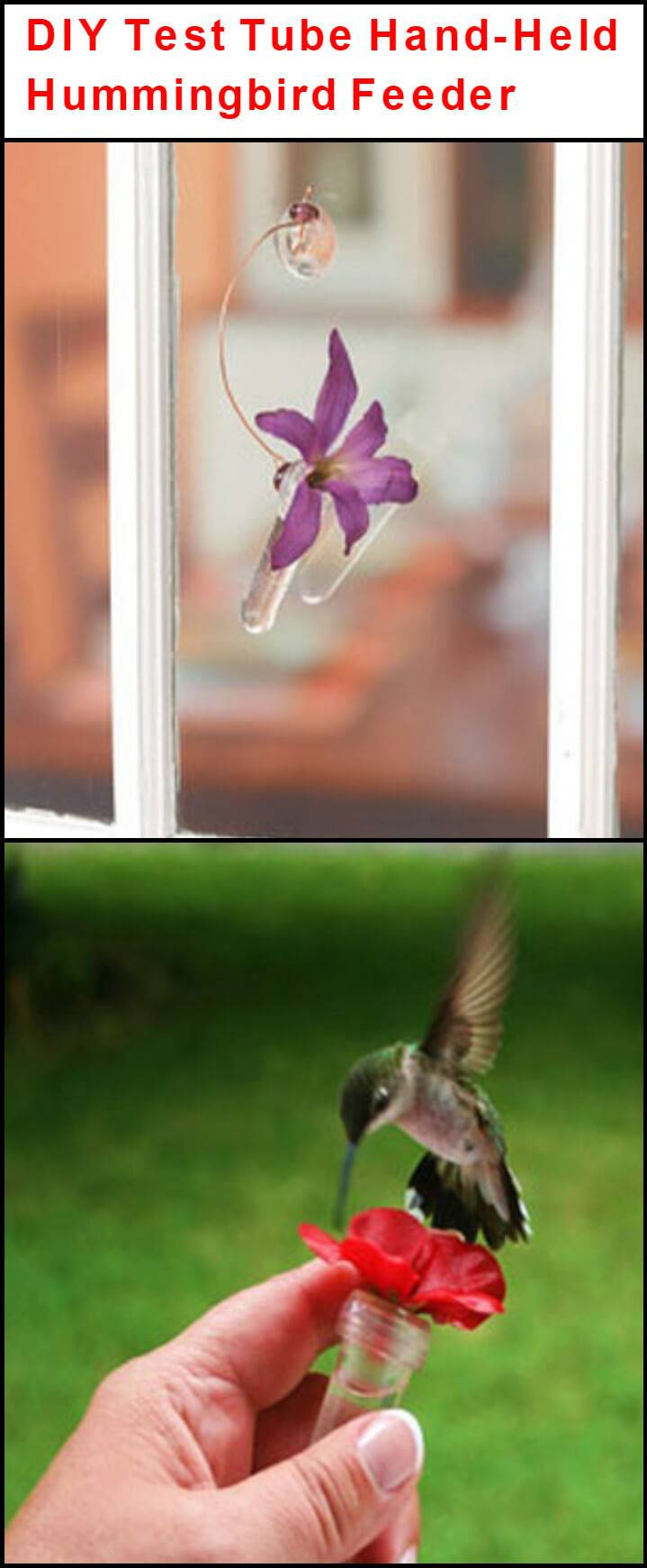 repurposed test tube hand-held hummingbird feeder