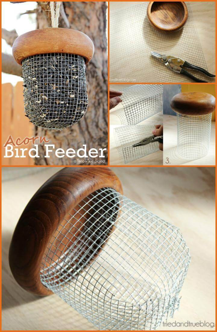 self-made acorn baby bird feeder