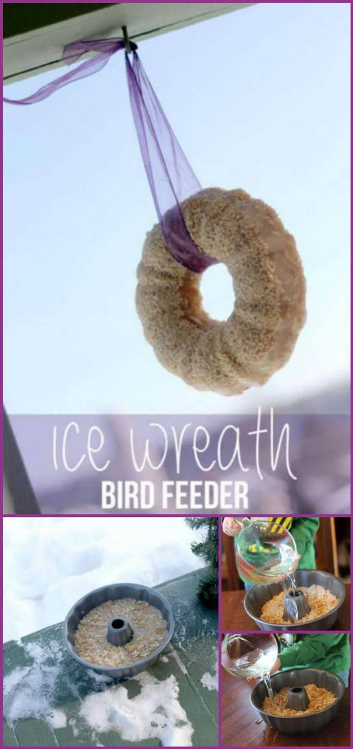 special ice wreath bird feeder