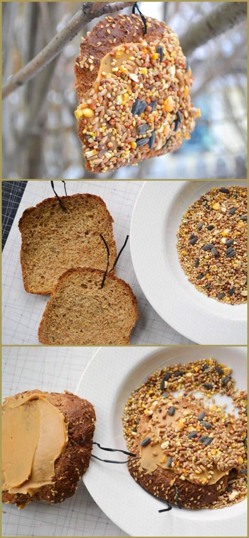 quick stale bread bird feeder