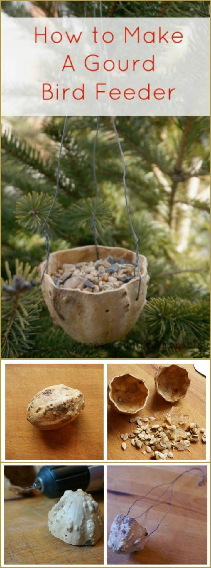 simple and easy gourd bird feeder
