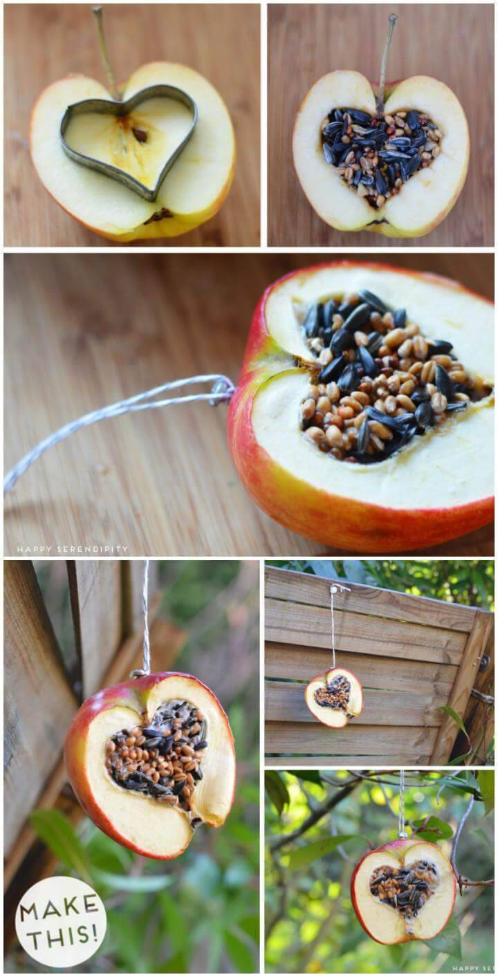 easy apple heart bird feeder
