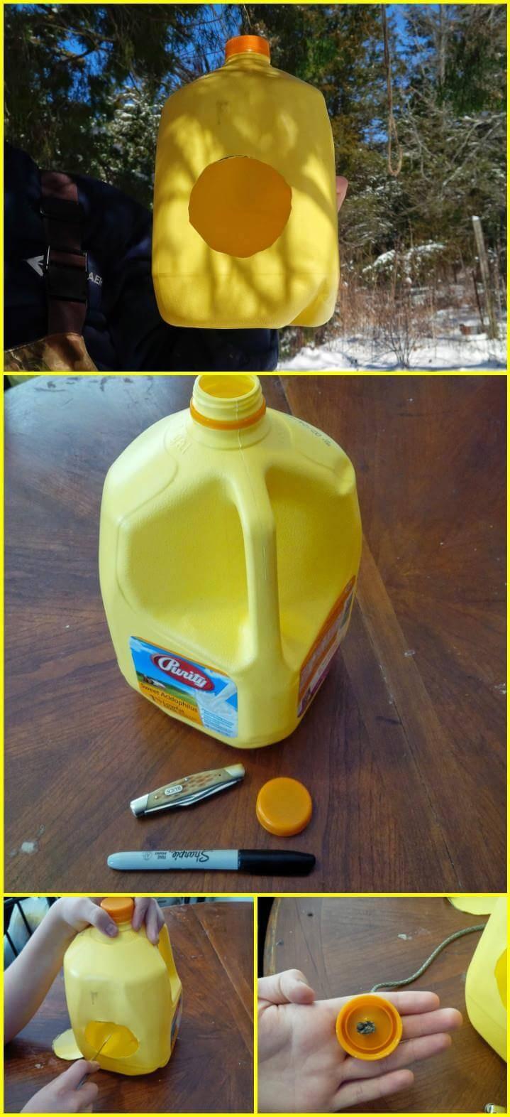 repurposed milk jug bird feeder