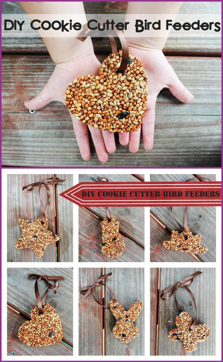 Easy homemade cookie cutter bird feeders