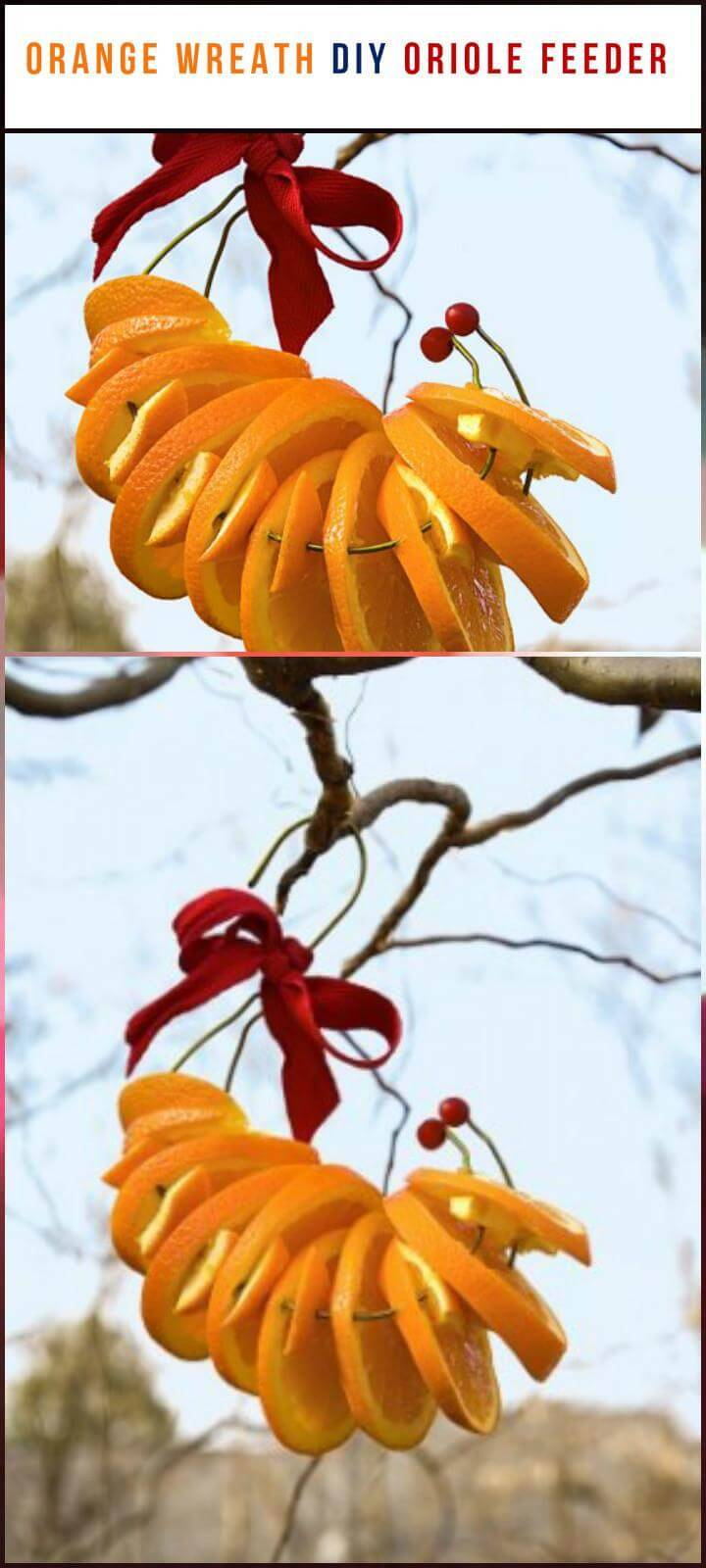 orange slices wreath oriole feeder