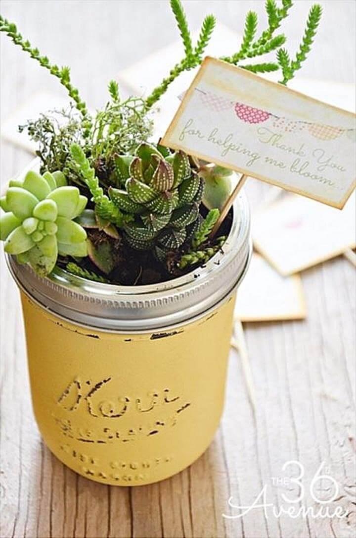 Amazing Succulent Mason Jars