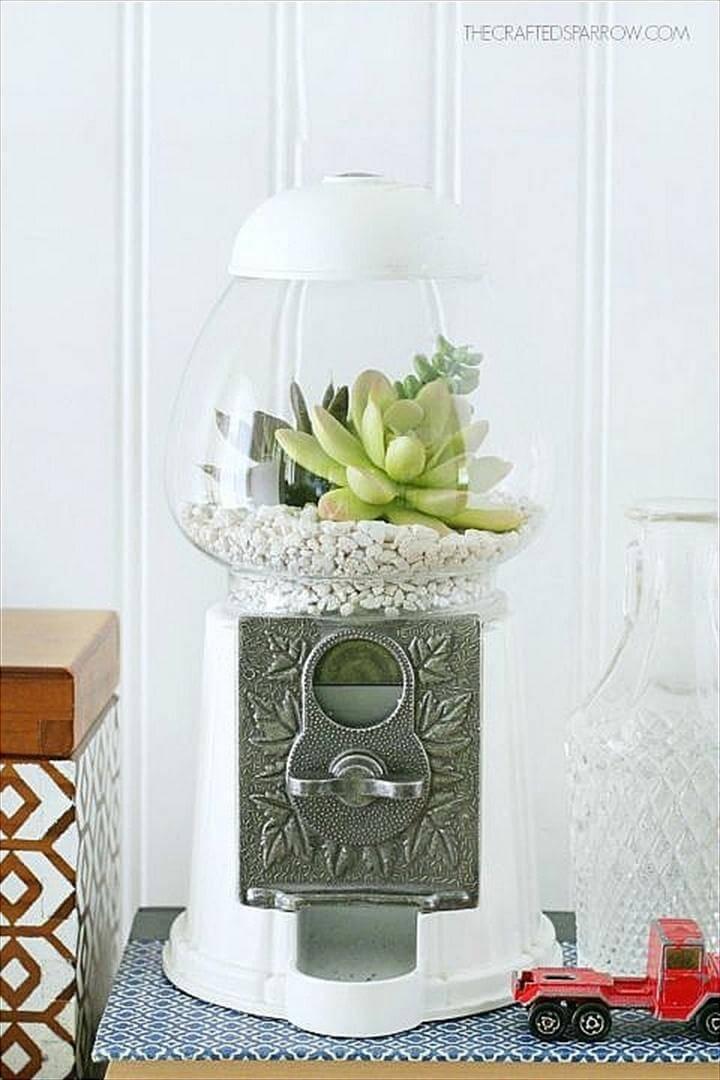 Beautiful Succulent Gum Ball Machine
