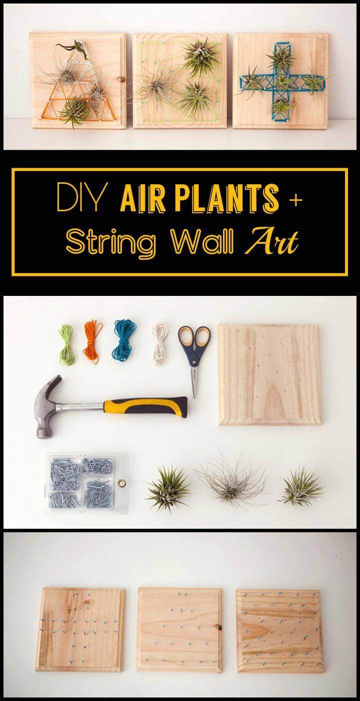 DIY Air Plants + String Wall Art