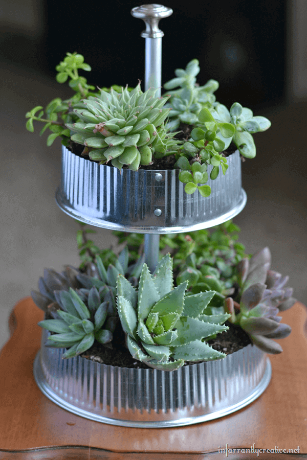 DIY Galvanized & Tiered Vent Cap Succulent Indoor Display