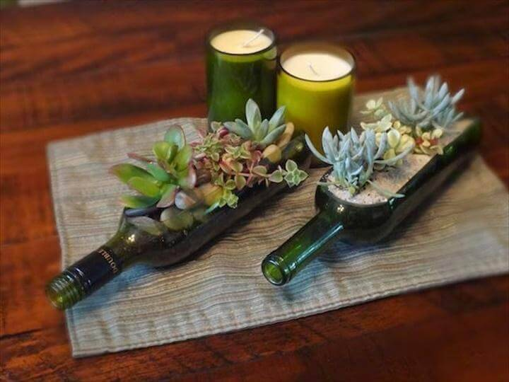 DIY Glass Bottle Succulents for Indoor Display