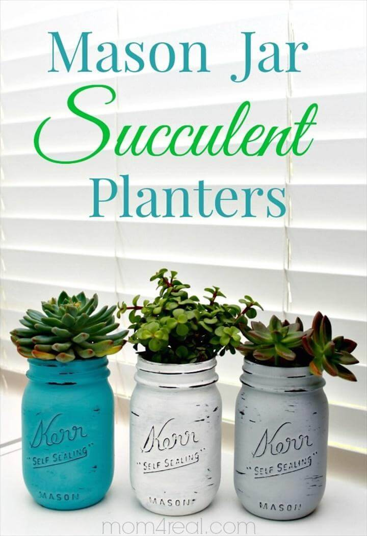 Repurposed Mason Jar Succulent Indoor Display Idea