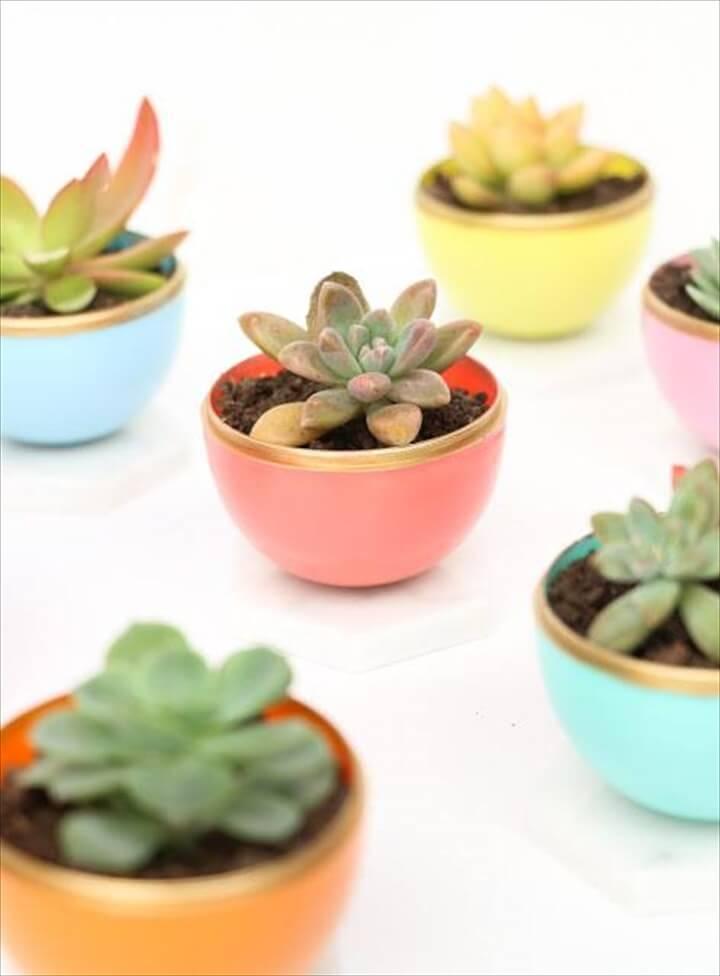 DIY Mini Succulent Pots