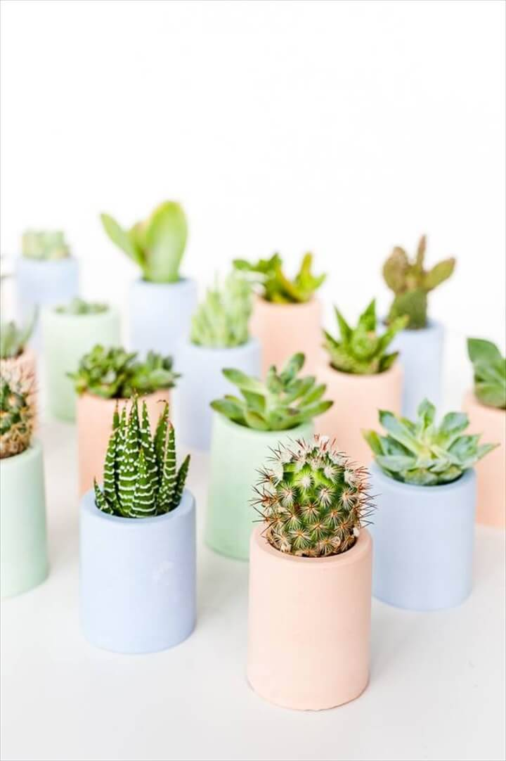 DIY Planter Mini Succulent Planters