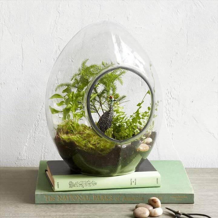 DIY Precious Succulent Terrarium