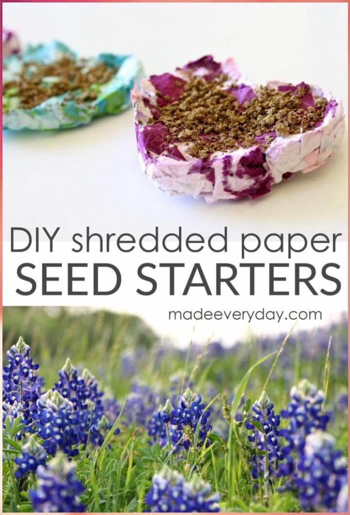 DIY shredded paper seed starters