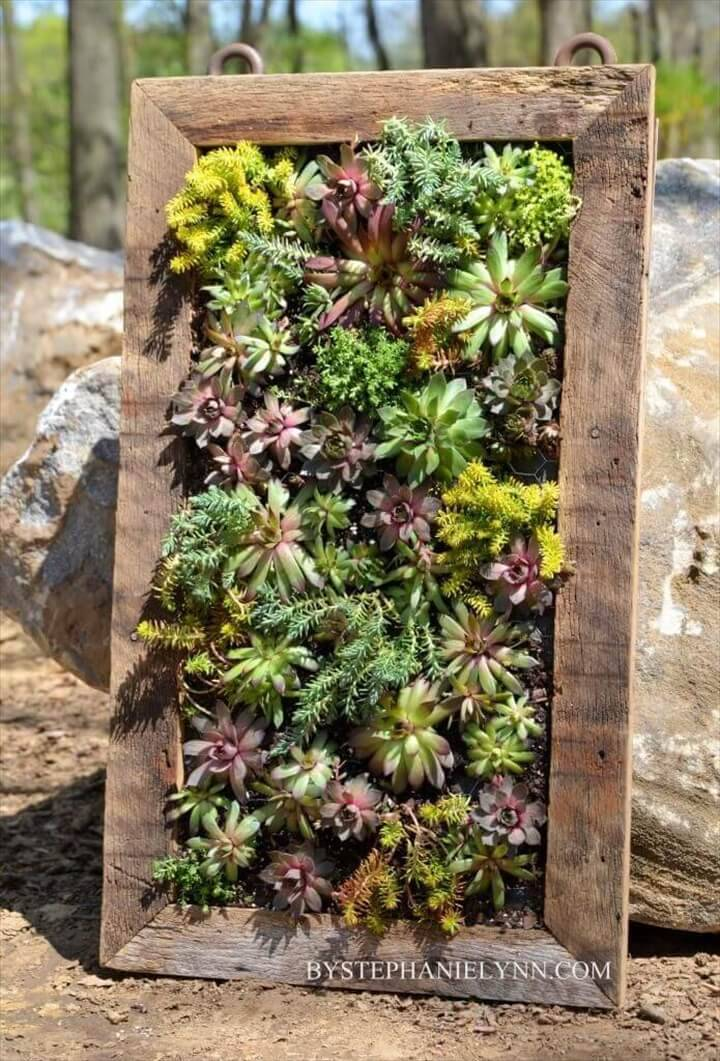 DIY Succulent Vertical Wall Planter