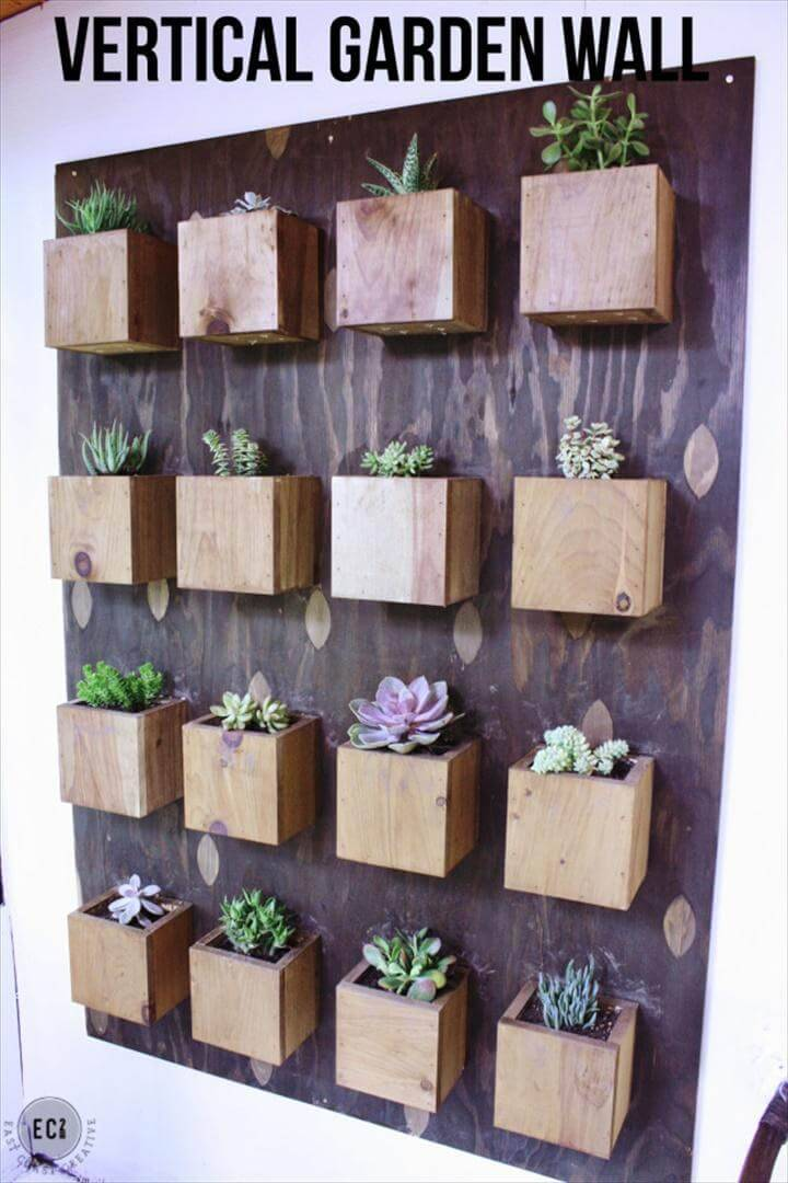 DIY Vertical Succulent Planter Wall Display