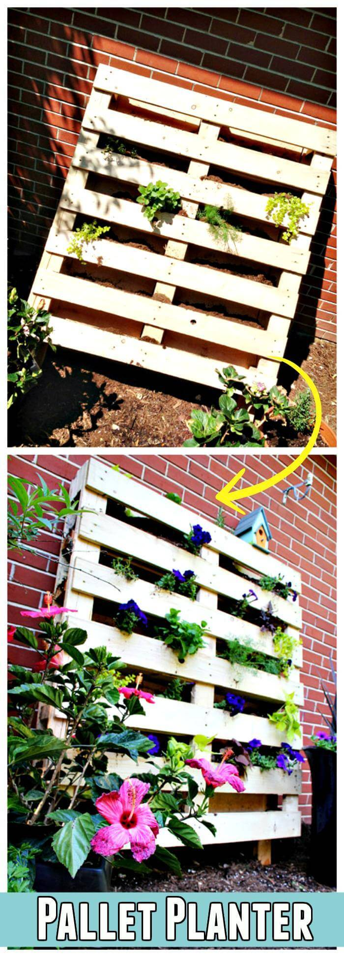 DIY Quick Pallet Planter