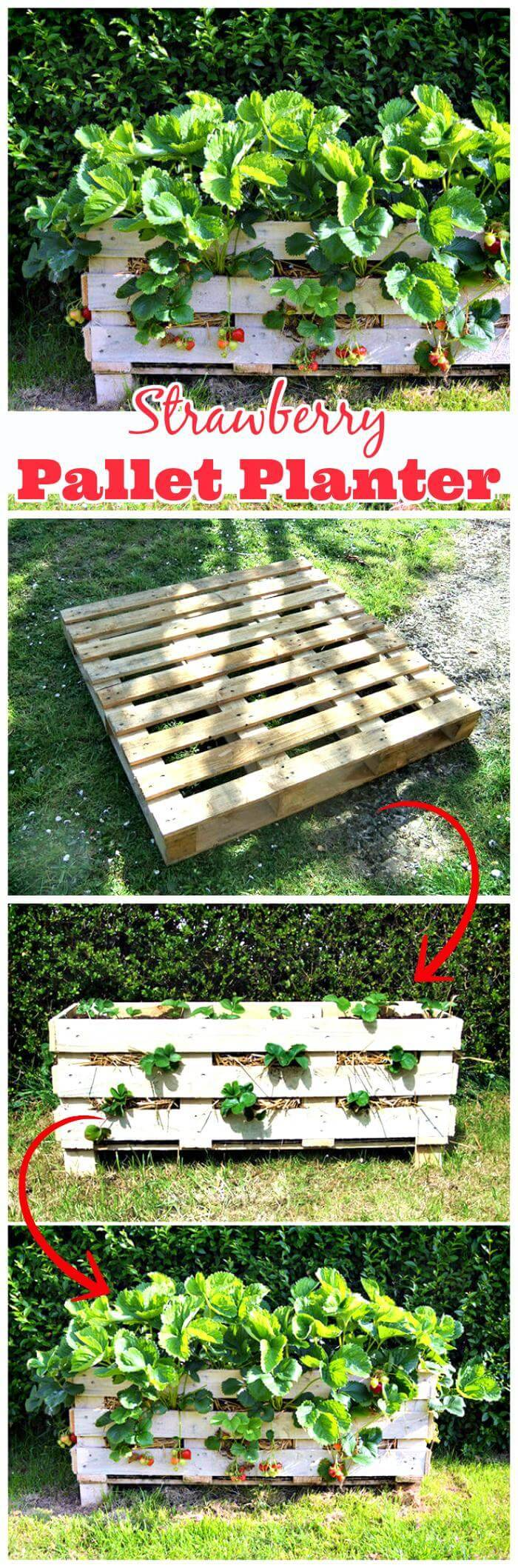 Wooden Strawberry Pallet Planter