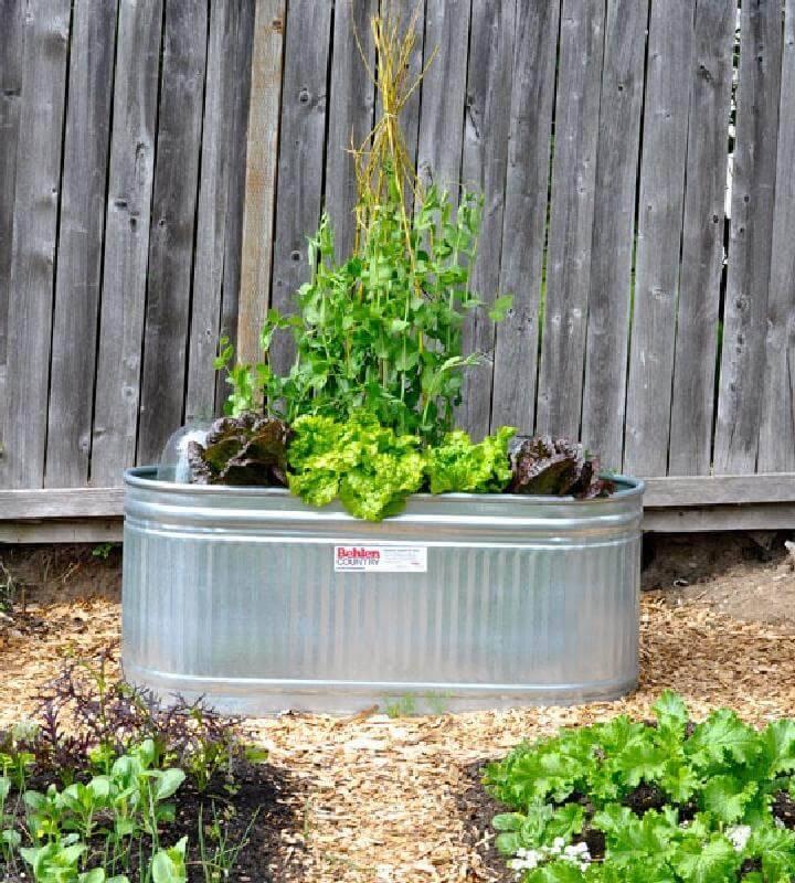 Repurposed Water Trough Planter