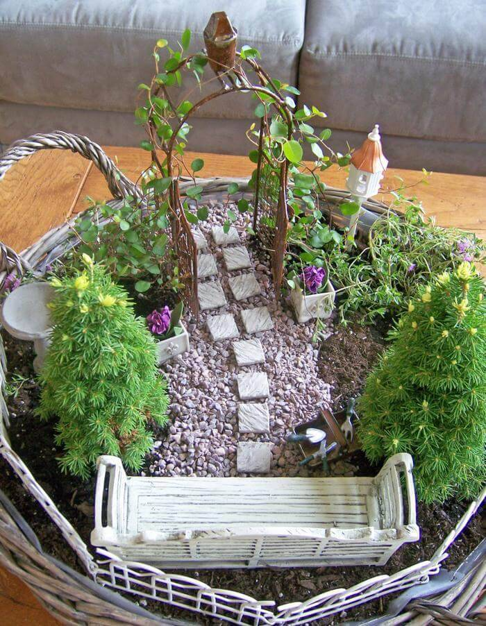 Creating a Magical Miniature Garden
