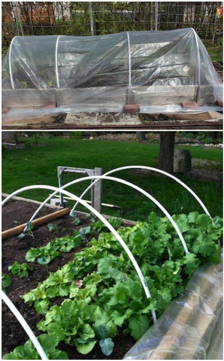 DIY 10$ Greenhouse