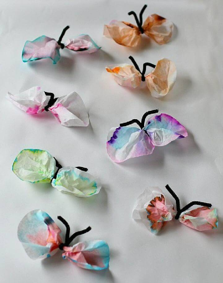 DIY Coffee Filter Chromatography Butterflies