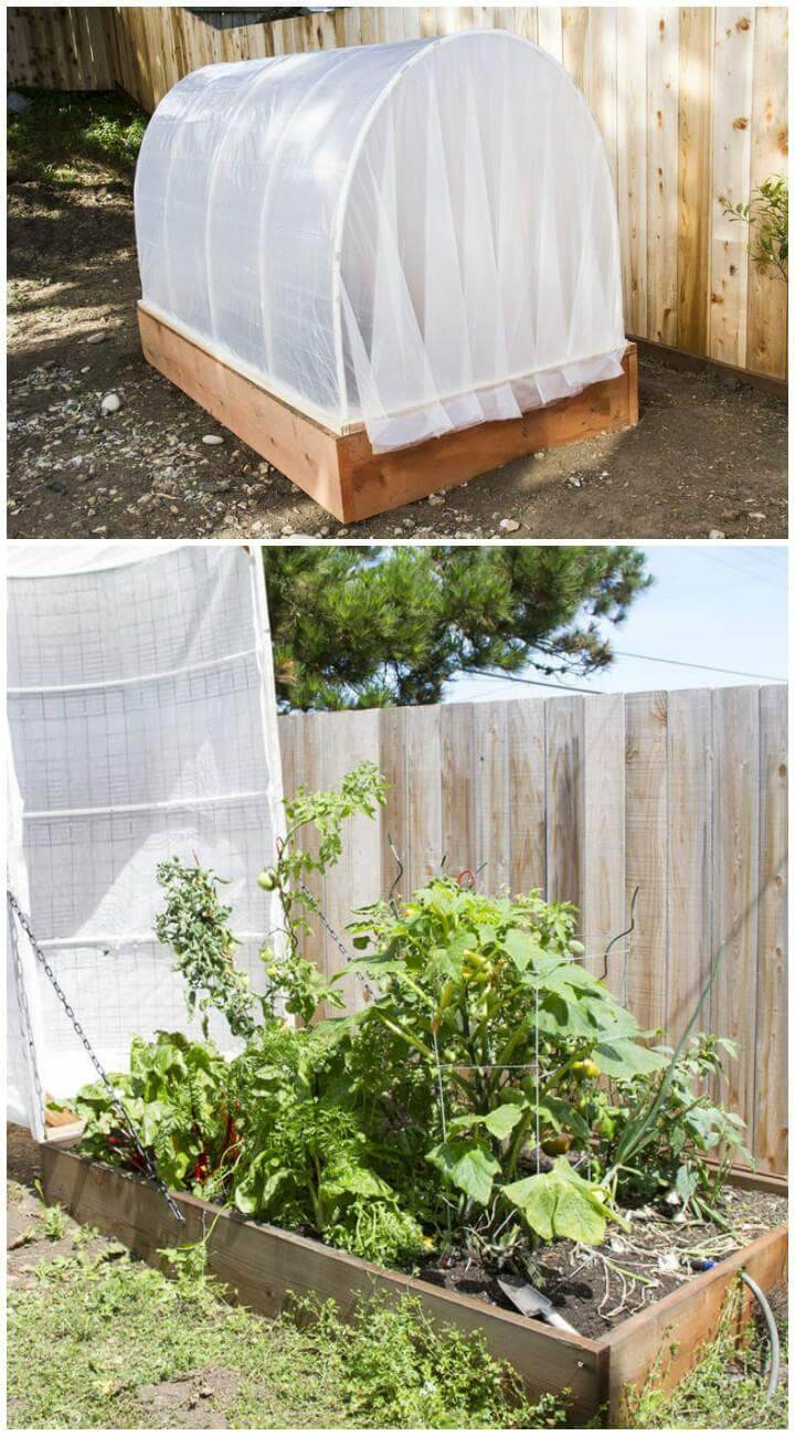 DIY Garden Greenhouse with Removable Cover