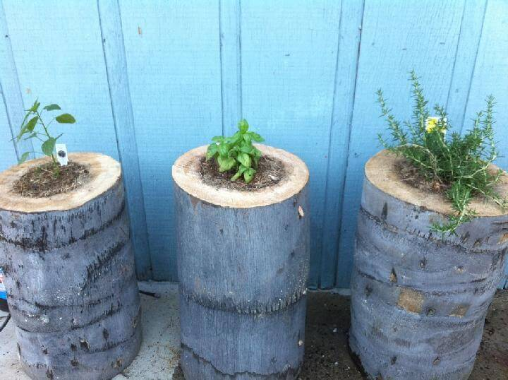 DIY Gorgeous Stump Planters