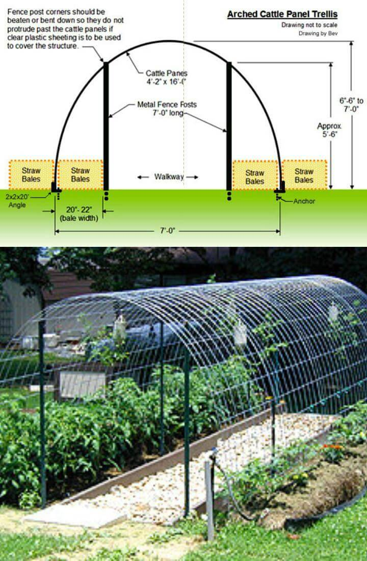 DIY Hardware Fencing Hoop Greenhouse