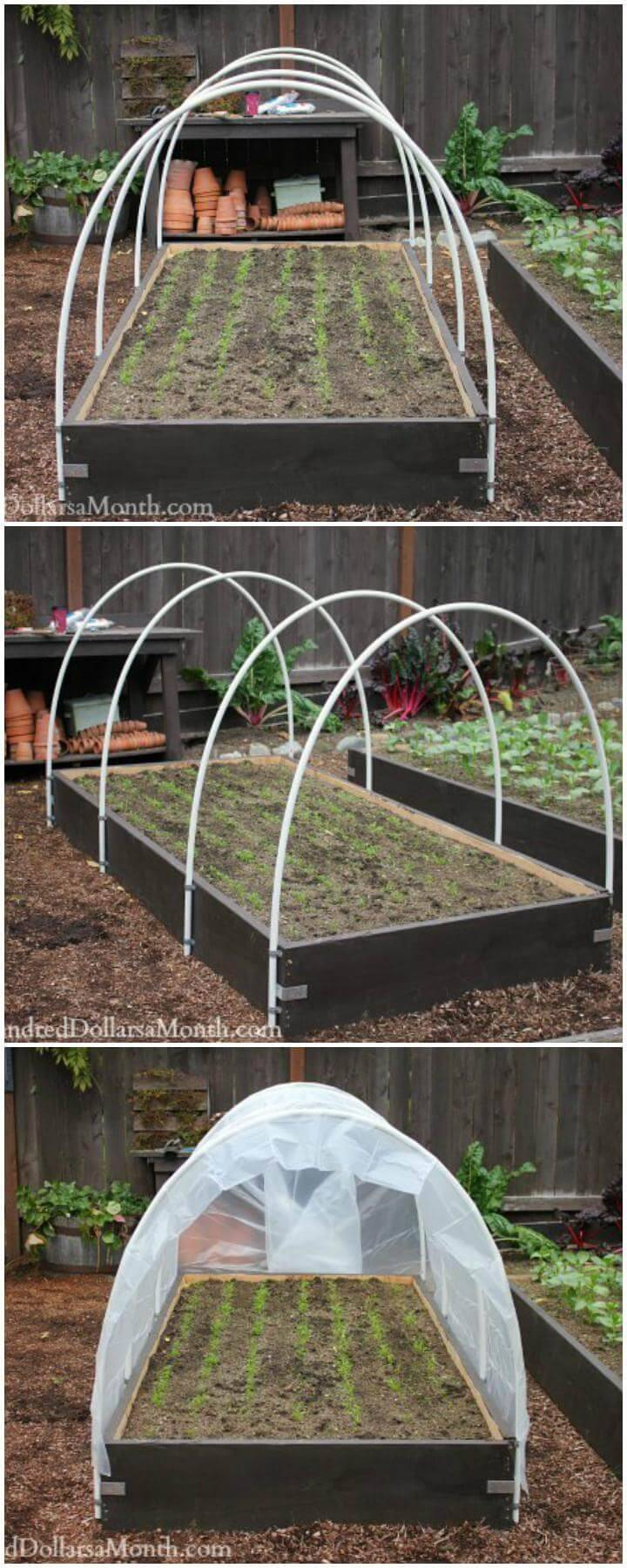 DIY Mini Hoop Style Plastic Pipe Greenhouse