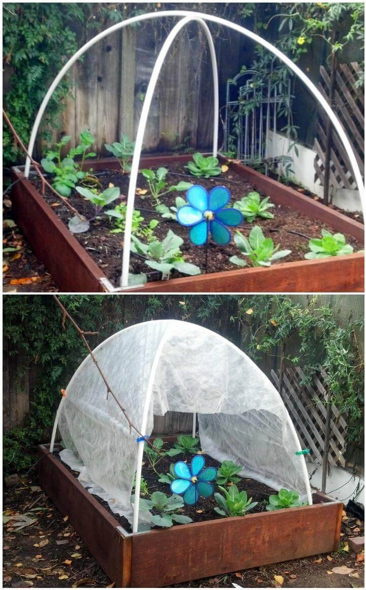 DIY Pipe Hoop Greenhouse