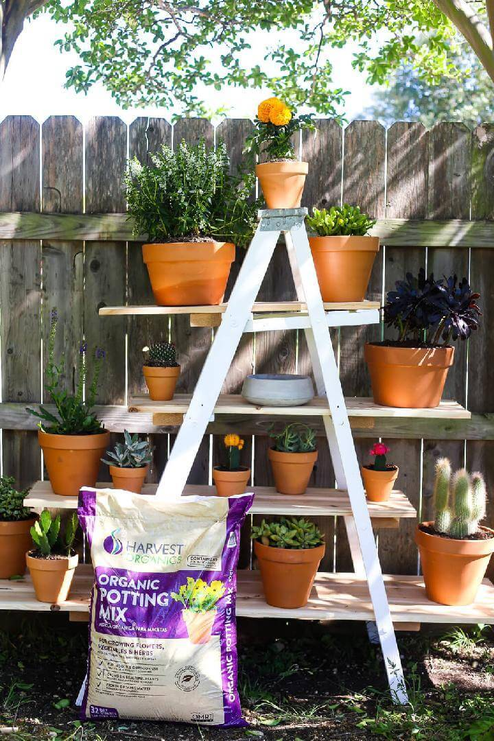 DIY Tiered Ladder Garden Tutorial