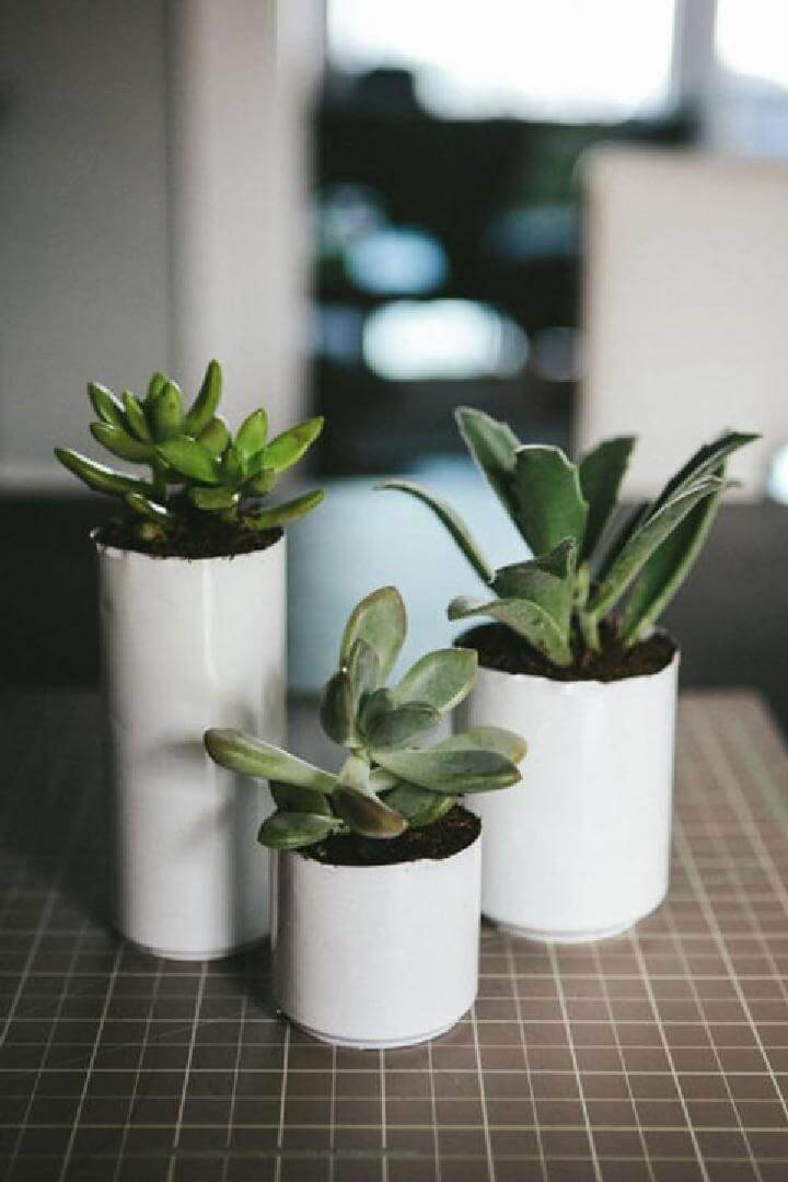 Recycled and Whitewashed Soda Can Succulent Planters