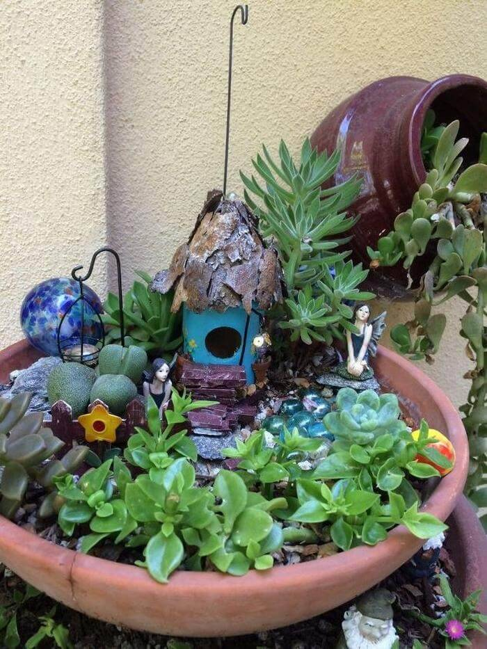 Water Wise Fairy Garden