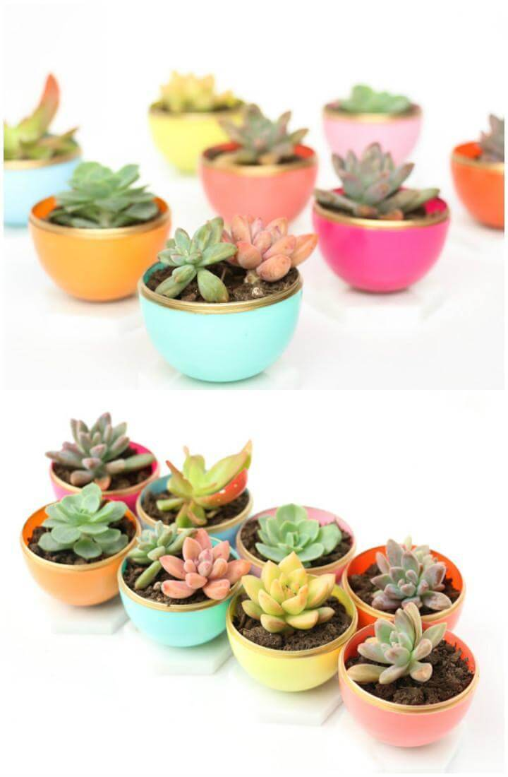 DIY Homemade Mini Spring Succulent Planters
