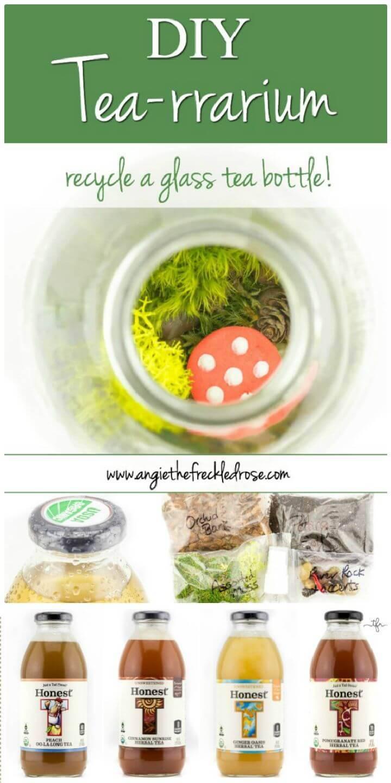 DIY Tea Rrarium