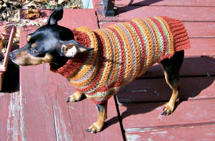 Free Crochet Autumn Stripes Crochet Min Pin Sweater Pattern