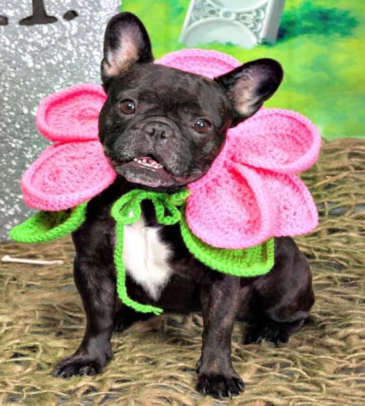 Free Crochet Blooming Dog Pattern