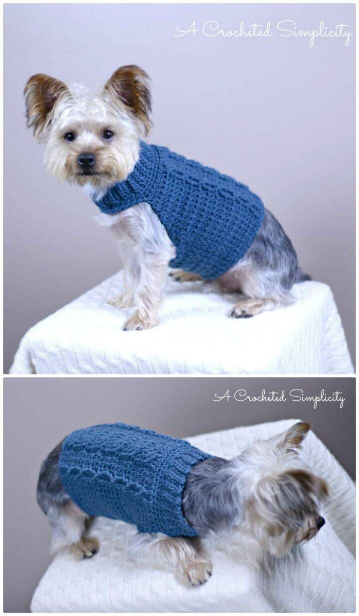 Free Crochet Cabled Dog Sweater Pattern