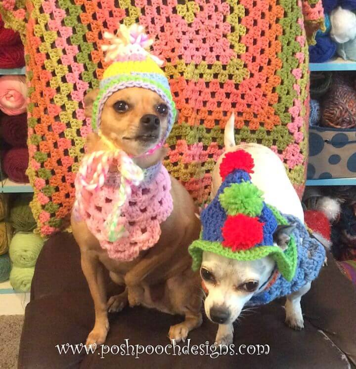 Free Crochet Dog's Birthday Hat With Pom Poms Pattern