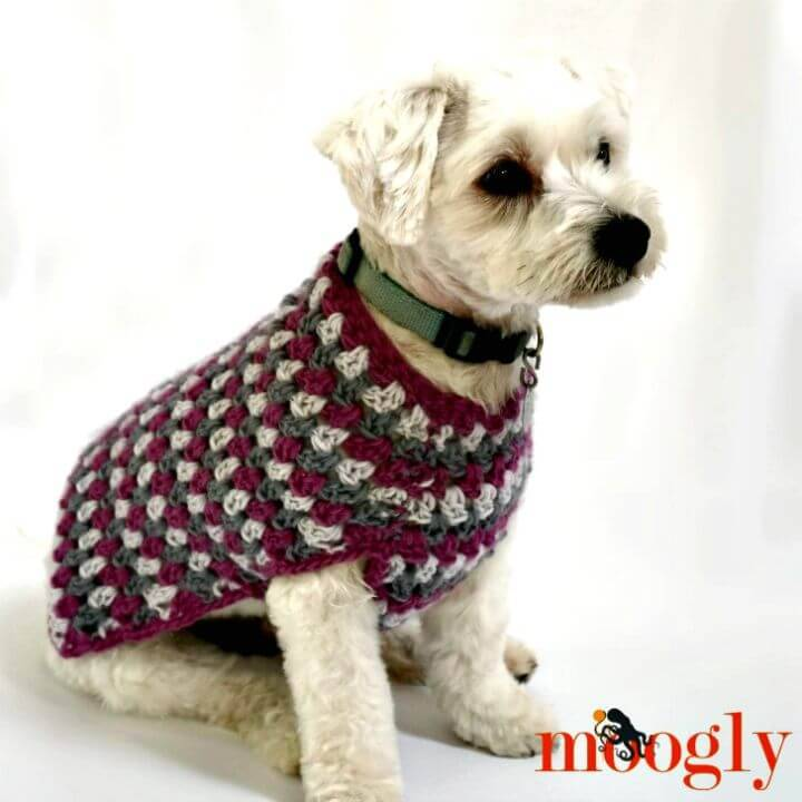 How To Crochet Well Dressed Dog Coat - Free Pattern
