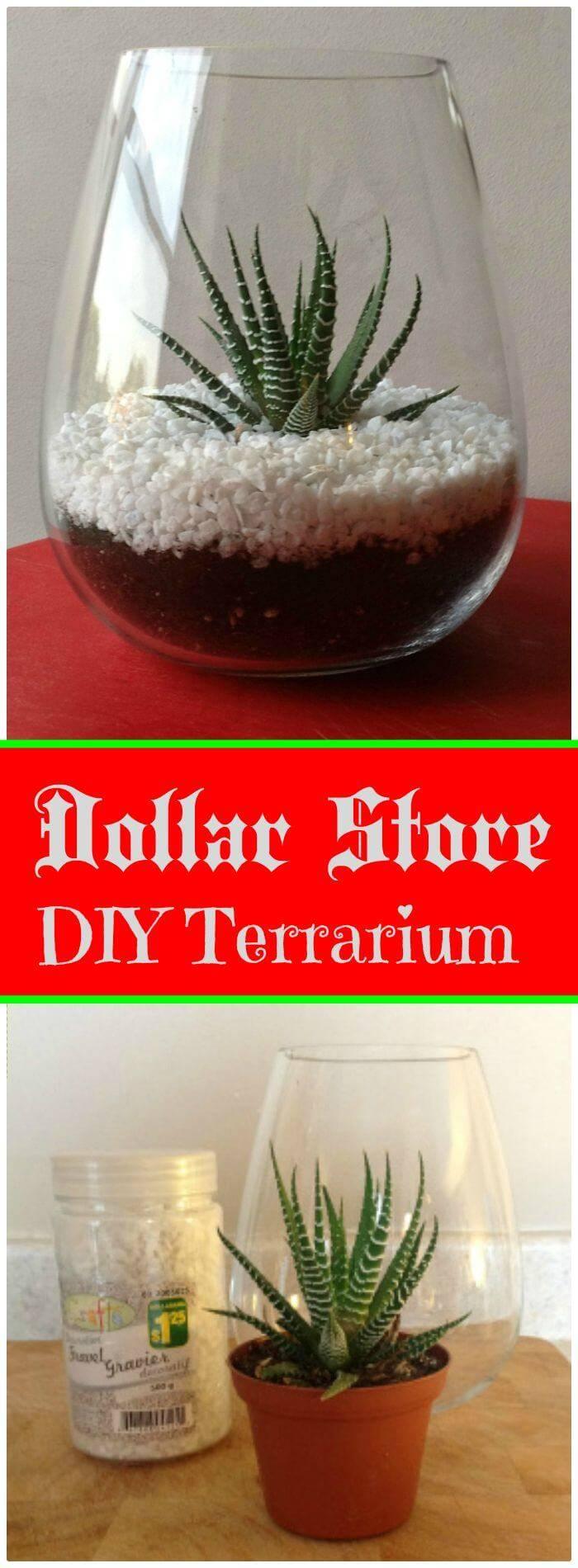 DIY Dollar Store Terrarium - Free Tutorial