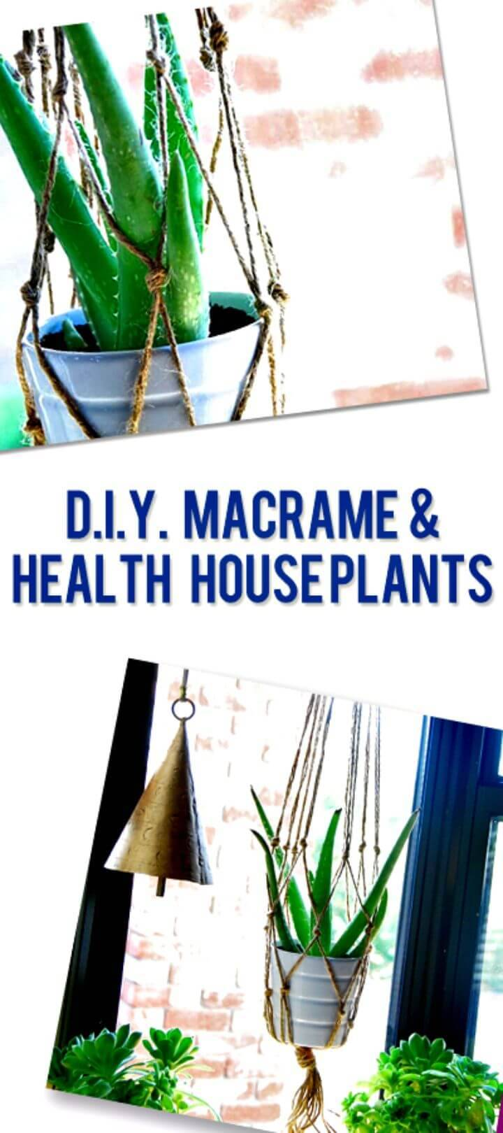 How To Make A Macrame And Healthy House Plants