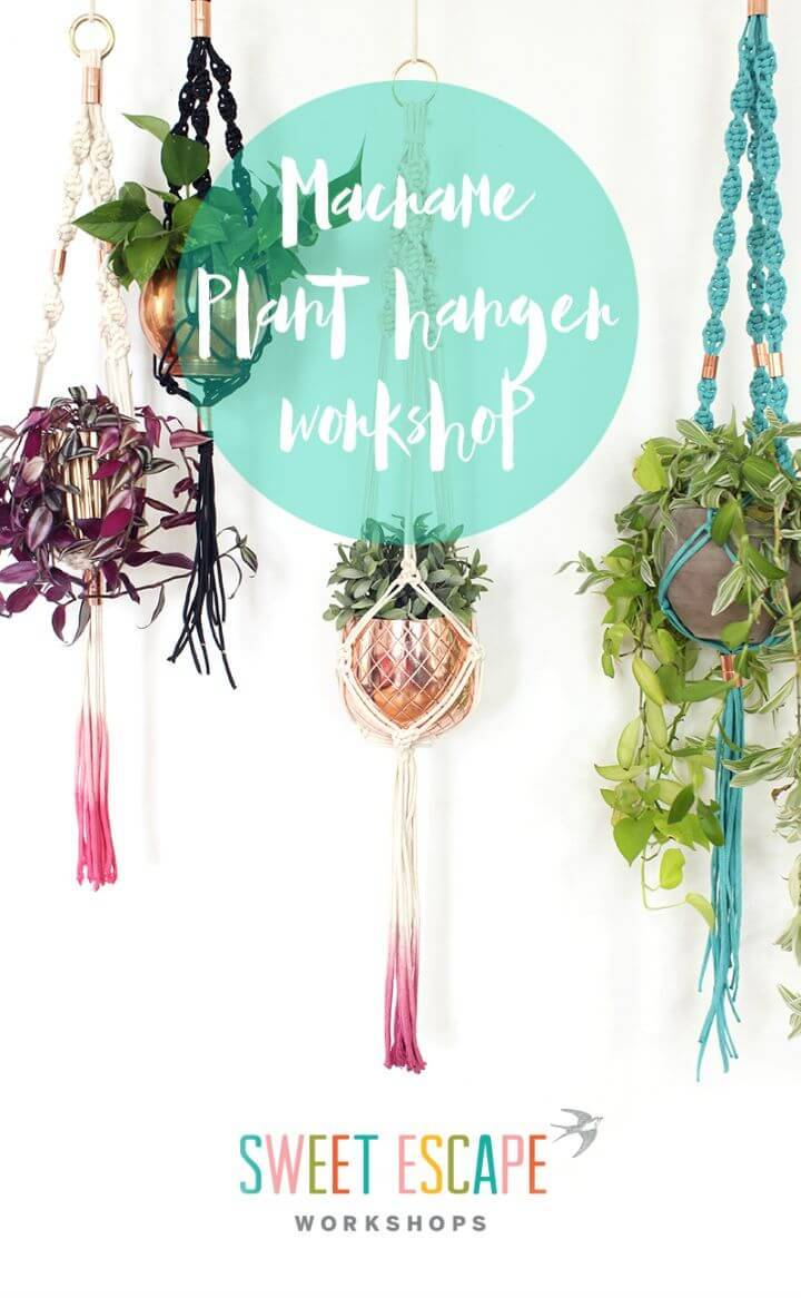 DIY Macrame Plant Hanger Workshop Fun