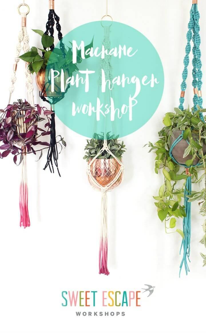 DIY Macrame Plant Hanger Workshop Fun