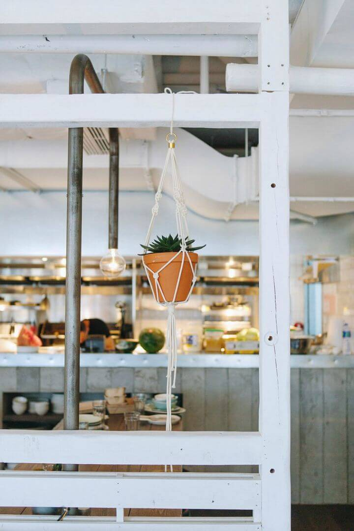 DIY Macrame Plant Hangers At Lime-wood