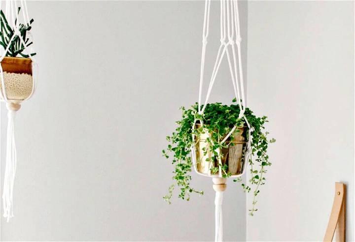 DIY A Macrame Plant Hanger With Using Golden Colour Pot